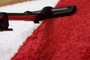 What to Expect From Your Carpet Cleaners